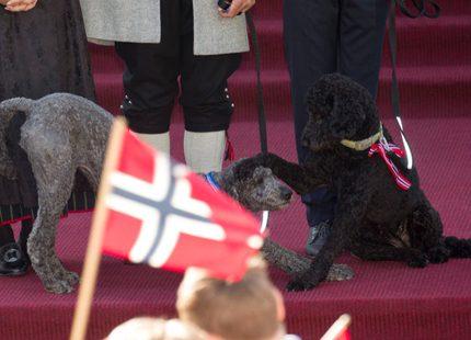 Hollands kungapar är i Norge