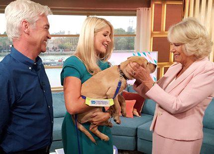 Camilla gullade med lydig vovve i tv-studion