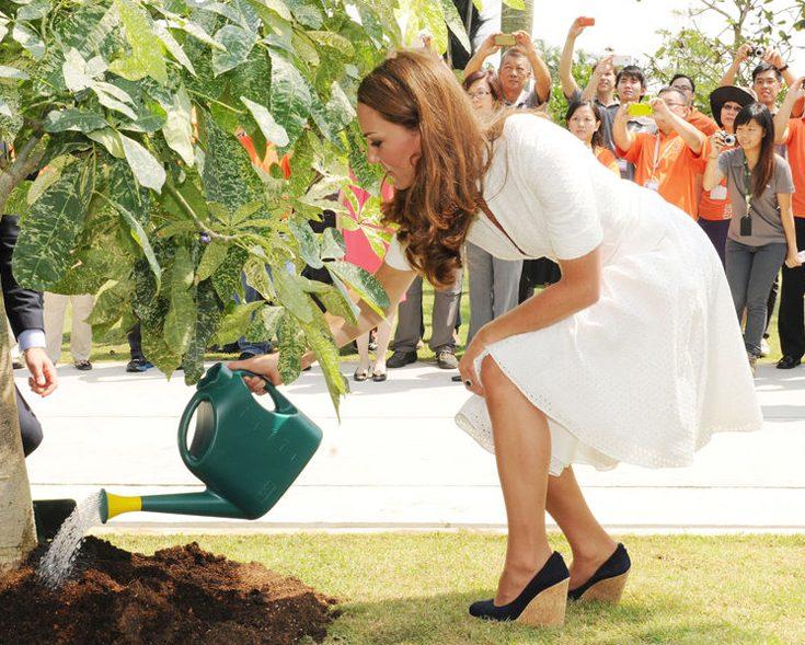 Nu ska Kate odla sin trädgård