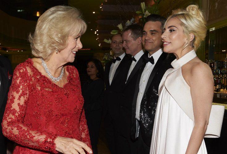 Camillas oväntade kommentar i mötet med Lady Gaga