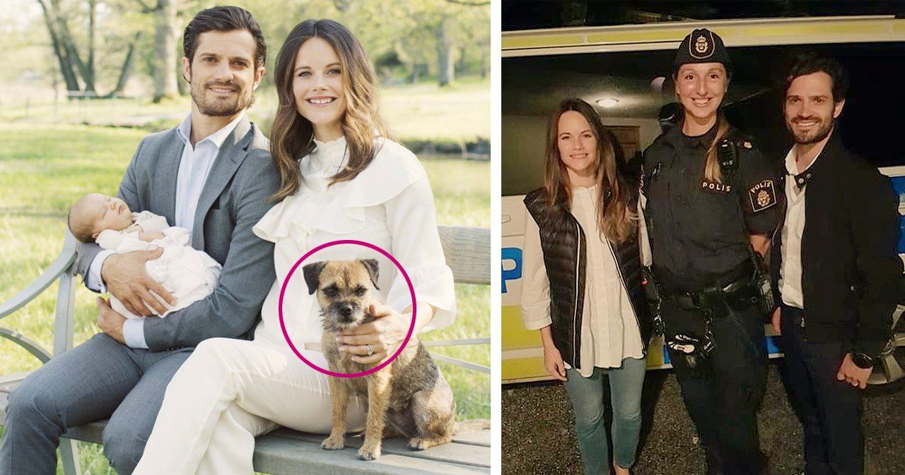 Carl-Philips och Sofias hund rymde - kördes hem i polisbil