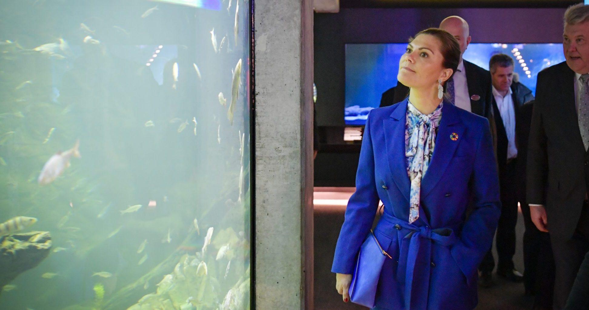 Kronprinsessans vision för Estelles framtid