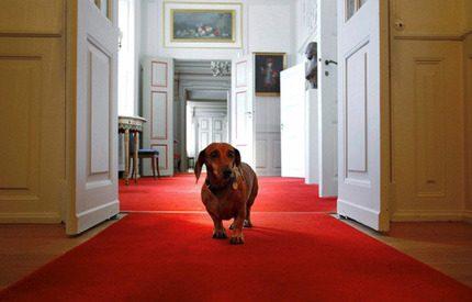 Titta in hemma hos drottning Margrethe på Fredensborg!